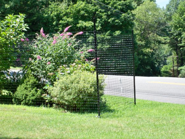 ultra deer fence 300 plus surrounding bushes