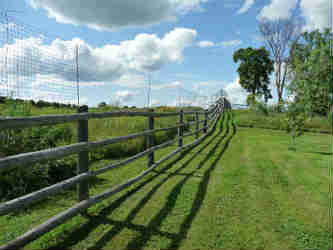 wooden fencing with ultra deer fence 300 plus behind it