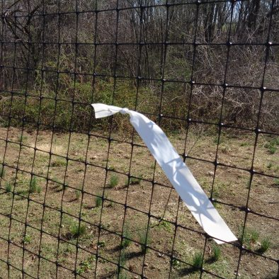 white streamer on fencing